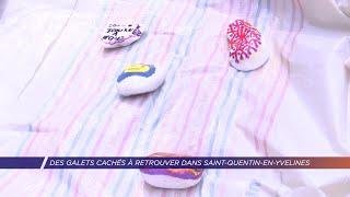 Yvelines | Des galets cachés à retrouver dans Saint-Quentin-en-Yvelines