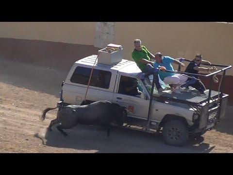 Toros Bravos - Encierro Campero Arrabal de Portillo 2018