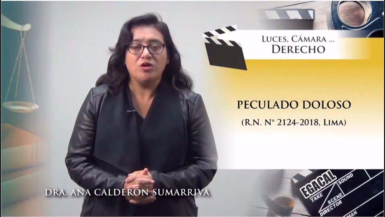 Download PECULADO DOLOSO (R.N. N° 2124-2018, Lima) - Luces Cámara Derecho 142  - EGACAL