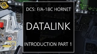 The Datalink and Situational Awareness (SA) Display of the F/A-18C Hornet - Introduction