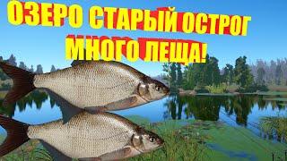 Русская рыбалка 4 рр4 rf4 много леща на озере Старый Острог