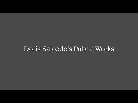 Doris Salcedo's Public Works