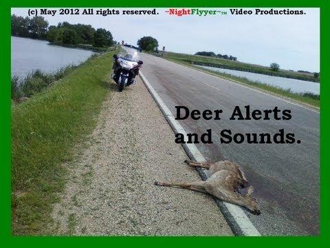 Do Deer Alerts work.  Ride along and hear.
