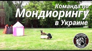 """Тренировка по Мондиорингу, Виталий Голота с командой, УДЦ """"Гелион"""""""
