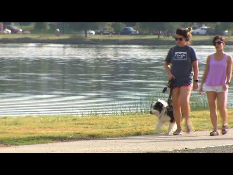 Denver Animal Shelter Warns Of Deadly Algae In Sloan Lake