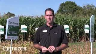 Optimal Soybean Harvest Timing Tips