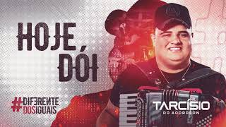 HOJE DÓI - Tarcísio do Acordeon - CD Diferente dos Iguais 2021
