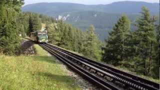 Schneebergbahn Salamander