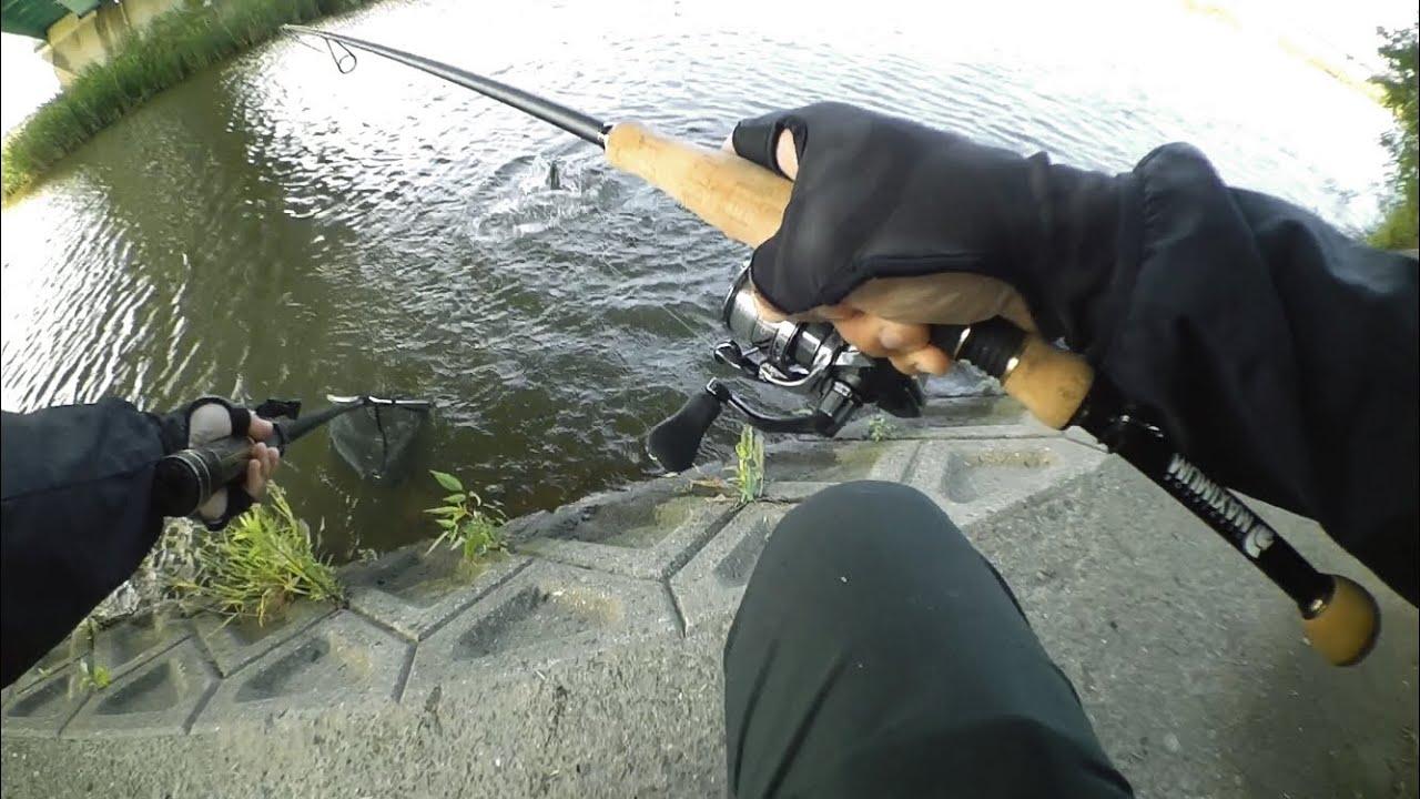 ミスしても入りなおせば釣れる!【紀の川】【マックスフィクサー】【コンプレックスXR】