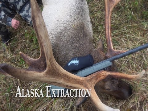 Alaska Extraction
