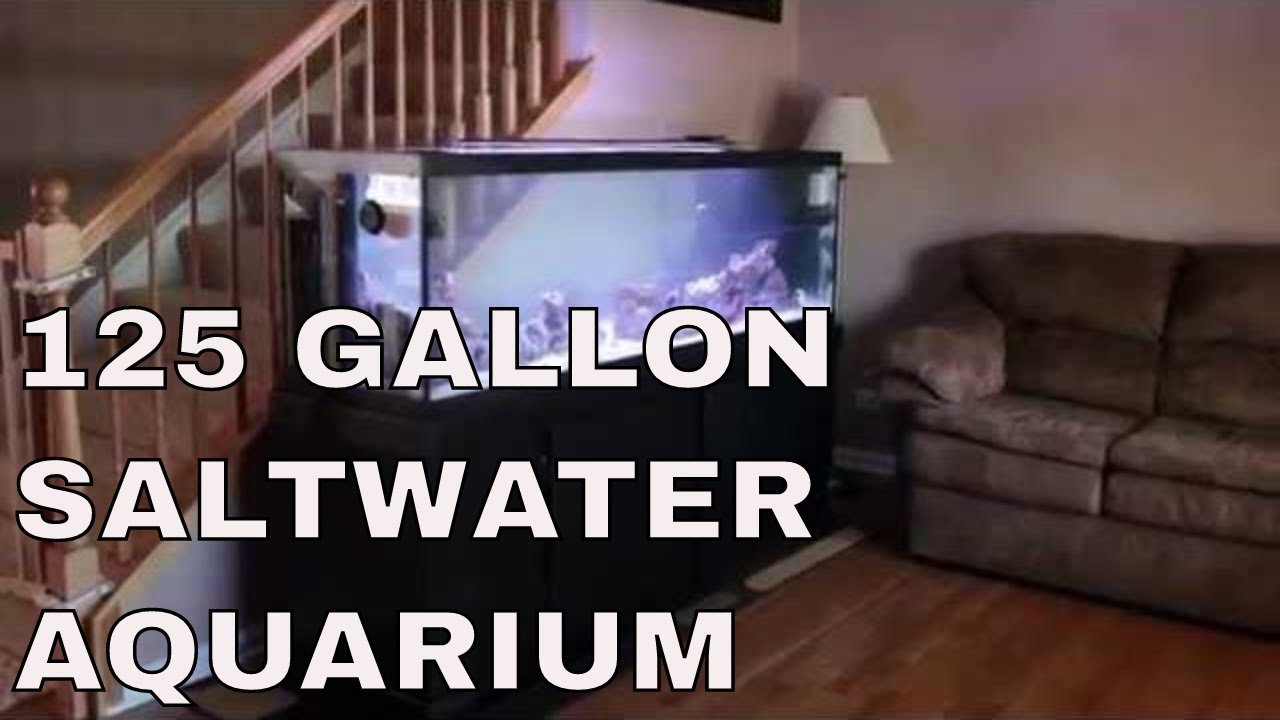 125 Gallon Marineland Reef Aquarium Complete Rotter
