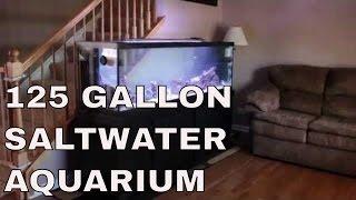 125 Gallon Marineland Reef Aquarium Complete
