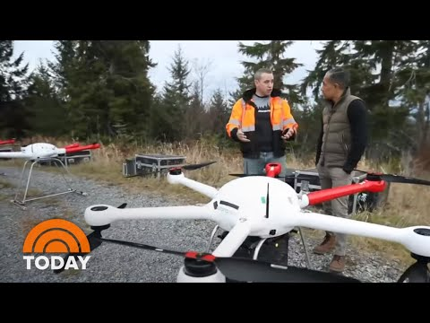 Drones Are Helping Replenish Areas Devastated By Wildfires | TODAY