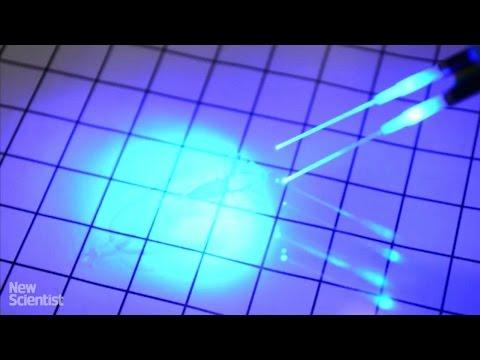 Cyborg stingray made of rat heart cells swims using light