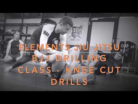 BJJ Drilling Class - Knee Cut to Leg Drag Guard Passing Drills