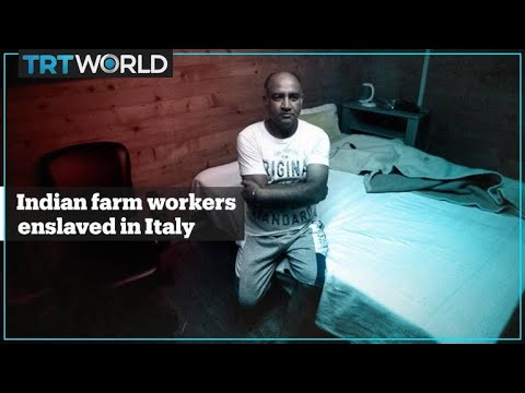 Indian farm workers exploited and kept like slaves in Italy