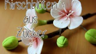 Kirschblüten aus Blütenpaste I Gumpaste cherry blossoms Tutorial I Fondant I Tortendekoration