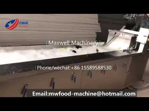 Vegetable sterilizing washer fruit washing sterilizer cleaning machine Ozone sterilizer