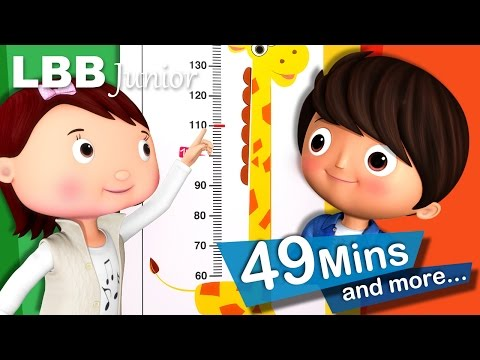 Measuring Your Height Song | And Lots More Original Songs | From LBB Junior!