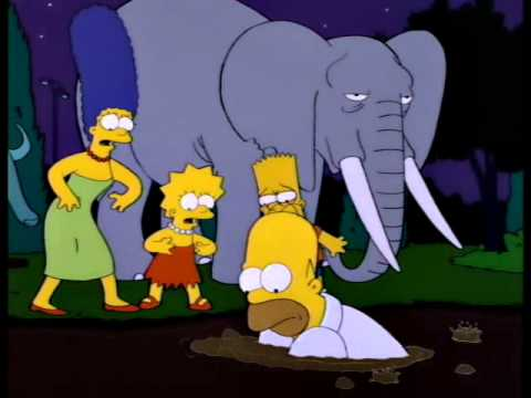 Homer Simpson And Stampy The Elephant Youtube