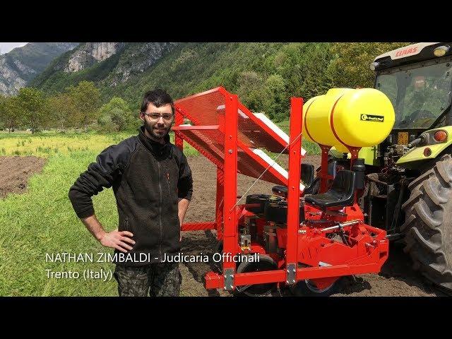 TESTIMONIAL CHECCHI & MAGLI - Nathan Zimbaldi - Judicaria Officinali (ITALY)