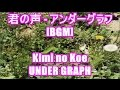 君の声 - アンダーグラフ[BGM]Kimi no Koe - UNDER GRAPH MUSIC.JP CMソング