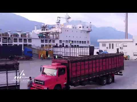 Exportação de Bezerros