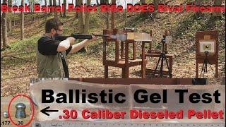 Break Barrel Pellet Rifle DOES Rival Firearm - Ballistic Gel Test