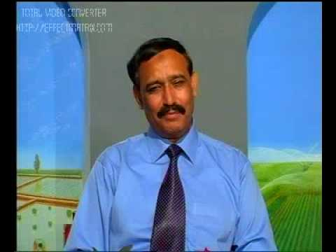 How to enhance Egg Production Pakistan Dr.Ashraf Sahibzada