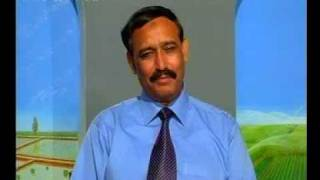 How to enhance Egg Production Pakistan Dr.Ashraf Sahibzada