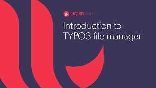 Introduction to the TYPO3 file manager