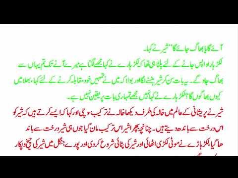 riasat health yips: Baba Bulleh Shah ki namazy janaza Koi