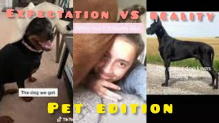 The pet we thought we were getting VS. what we actually get 'Compilation' || tiktok challenge