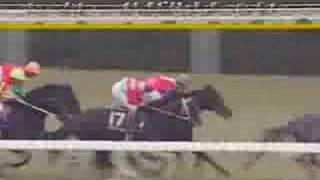 1993年菊花賞 - ビワハヤヒデ