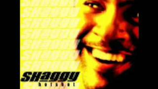 Shaggy - Keeping It Real