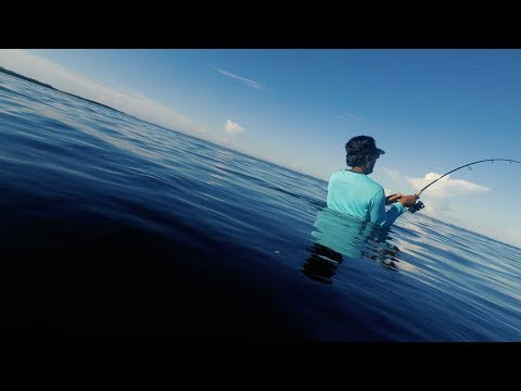 Wade Fishing 1/2 Mile Off Land Cape Coral Florida | Episode 10