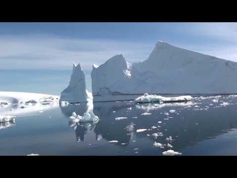 wo-pinguine-vortritt-und-wale-vorfahrt-haben