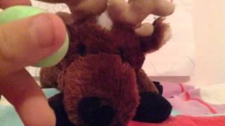 Comet the reindeer webkinz