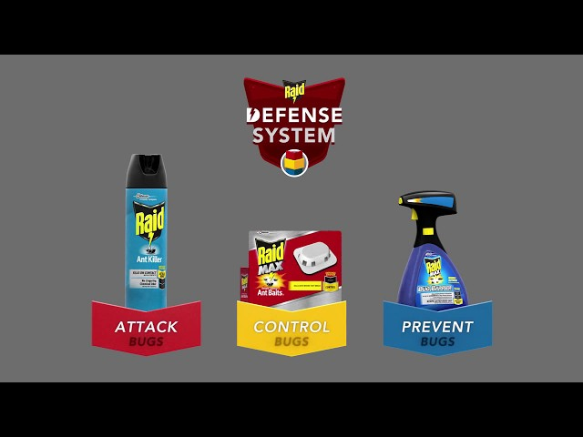 United States - Raid® How To Beat Ants