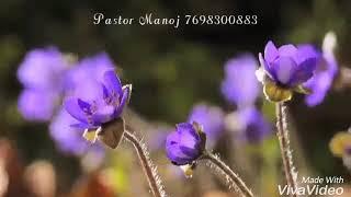 Kya phool chadhau me Christian whatsApp status