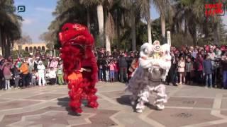 مصر العربية   سونغ آي قوه يطلق مهرجان عيد الربيع الصيني