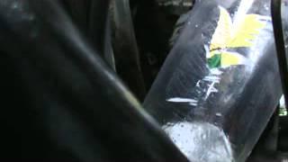 Как слить бензин с инжектора?(Показан способ как легко слить бензин с инжекторной машины., 2013-12-22T07:56:34.000Z)