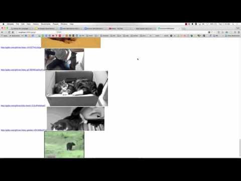 Golang Web API JSON