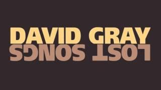 "David Gray - ""Tidal Wave"""