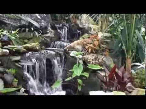 Endless Tropical Waterfall, Muttart Gardens, Edmonton, Alberta, Canada (Stabilized)