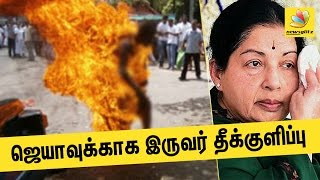 AIADMK members who immolated themself dies | Jayalalitha Health Issue