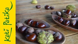 Kati-patika - Gyógyítsunk vadgesztenyével! (gyógynövények, természetgyógyászat)