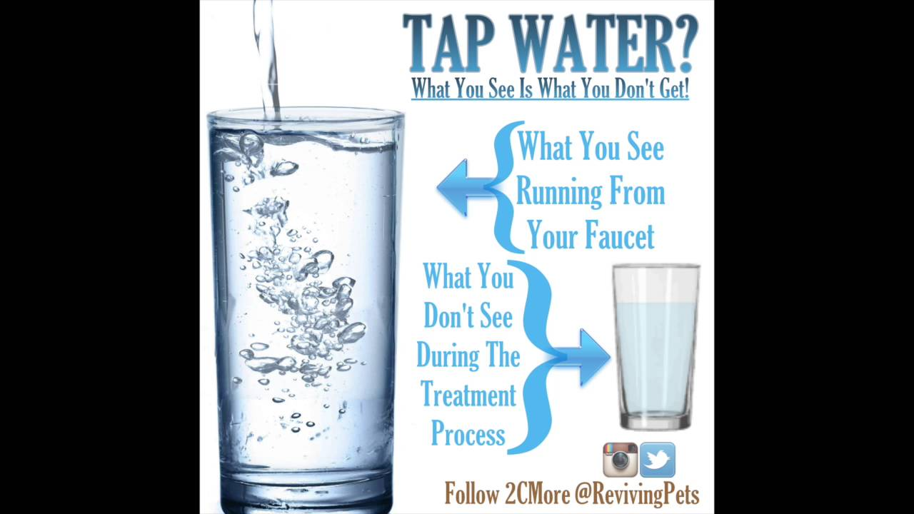 What is TAP WATER? - YouTube