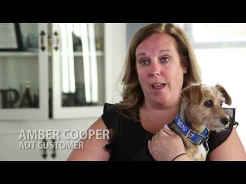 Home Security Systems for Pet Monitoring by ADT