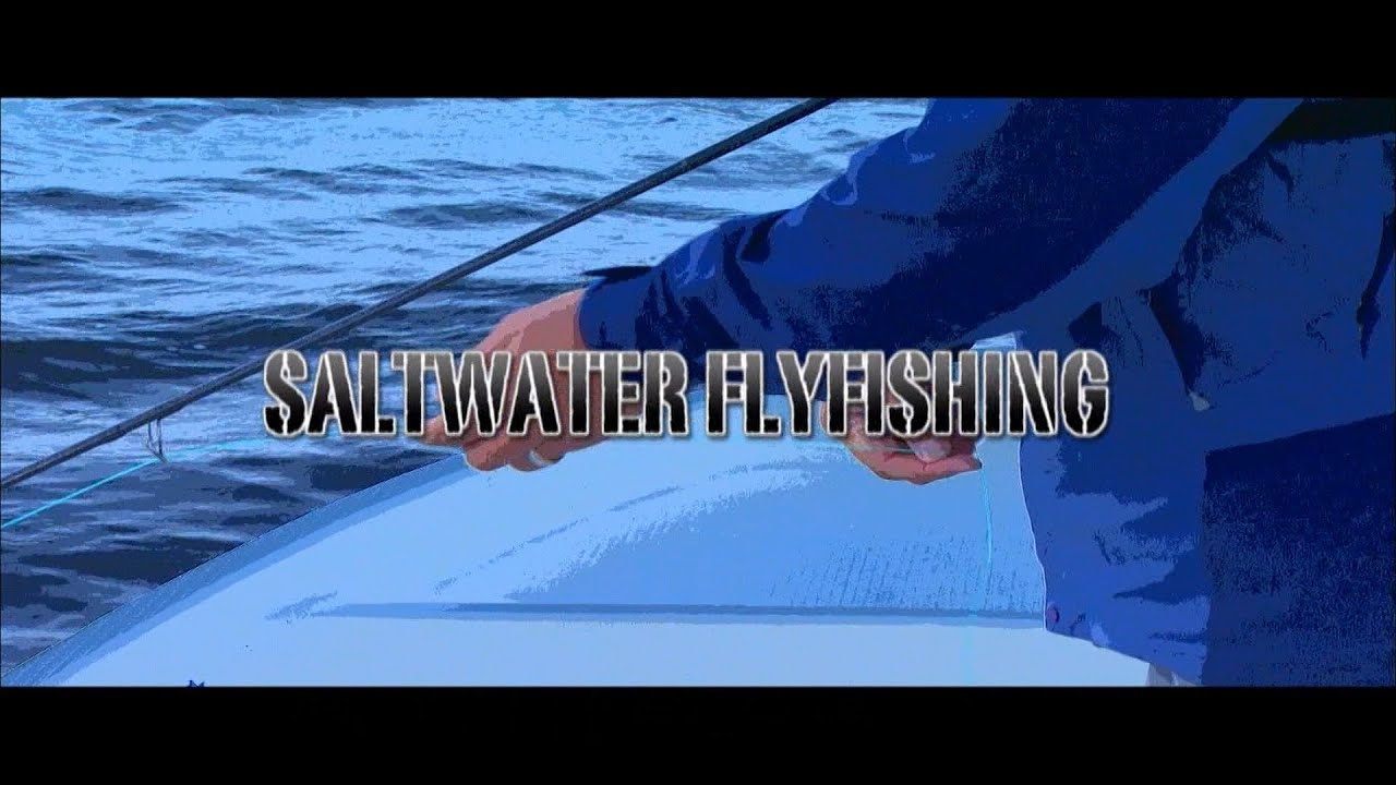 Fly Fishing Gallery Saltwater Flyfishing In Tokyo Bay Area